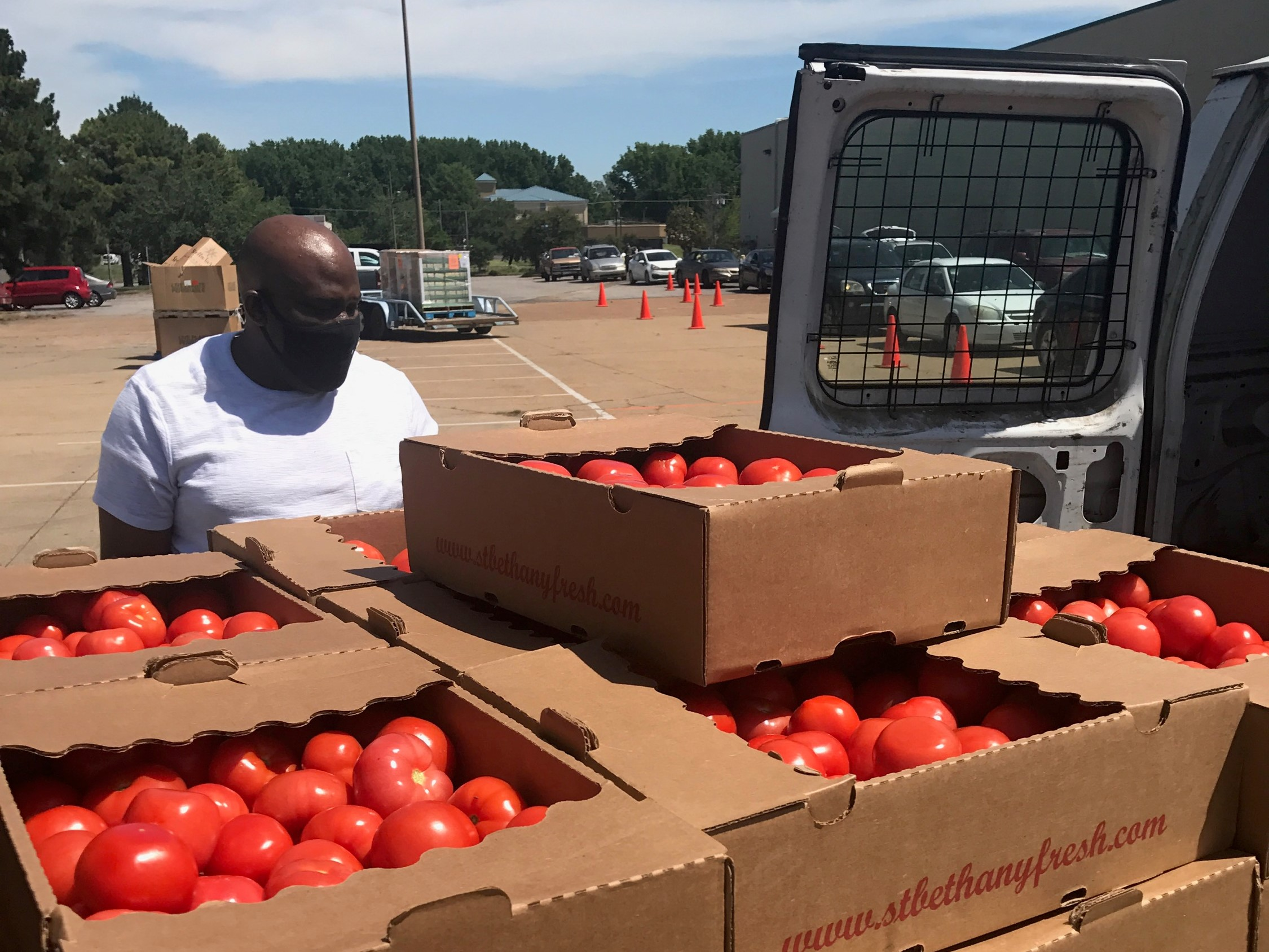 Delivery of fresh tomatoes